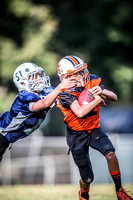 2014-09-13 ULYFL3 Tigers-Giants